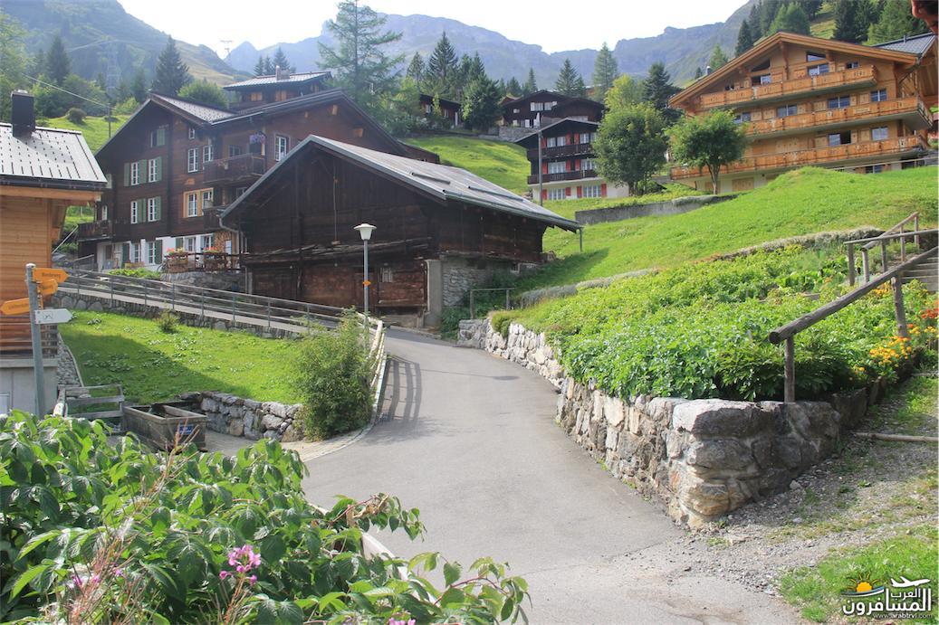 سويسرا بيوت ملوّنة و جداريات-544105