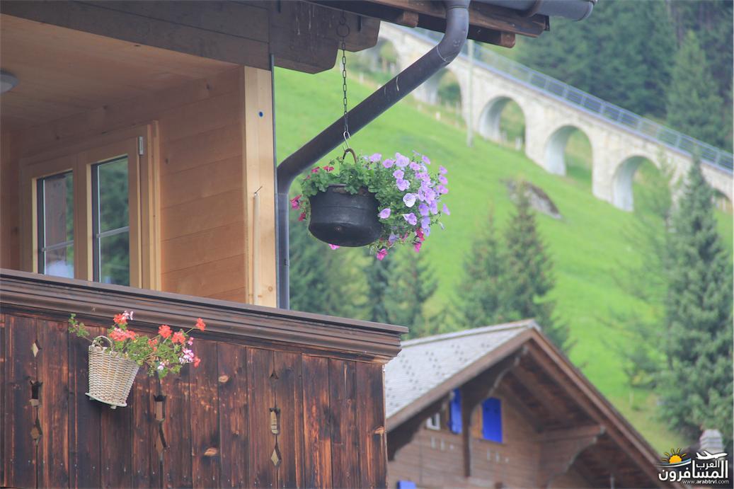 سويسرا بيوت ملوّنة و جداريات-544108