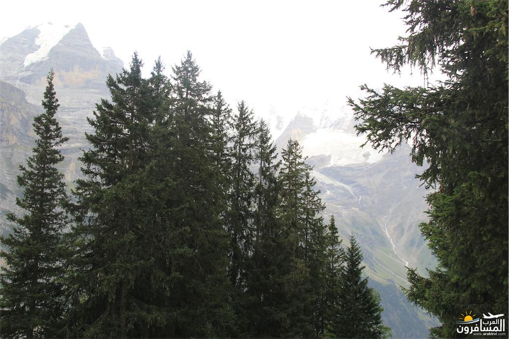 سويسرا بيوت ملوّنة و جداريات-544109