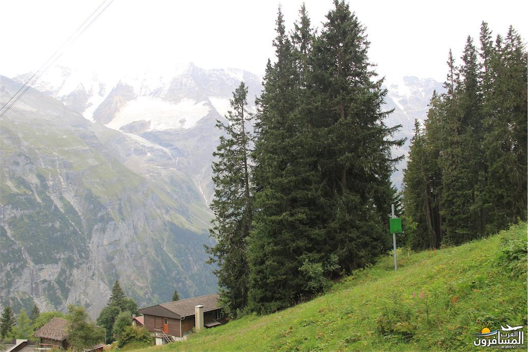 سويسرا بيوت ملوّنة و جداريات-544111
