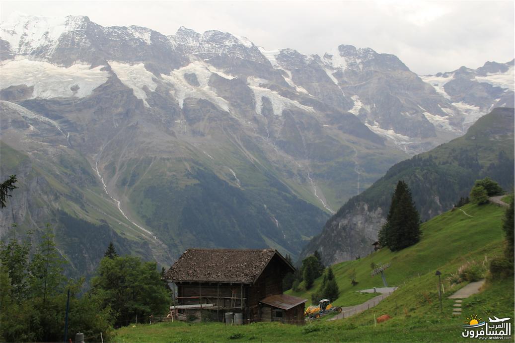 سويسرا بيوت ملوّنة و جداريات-544113