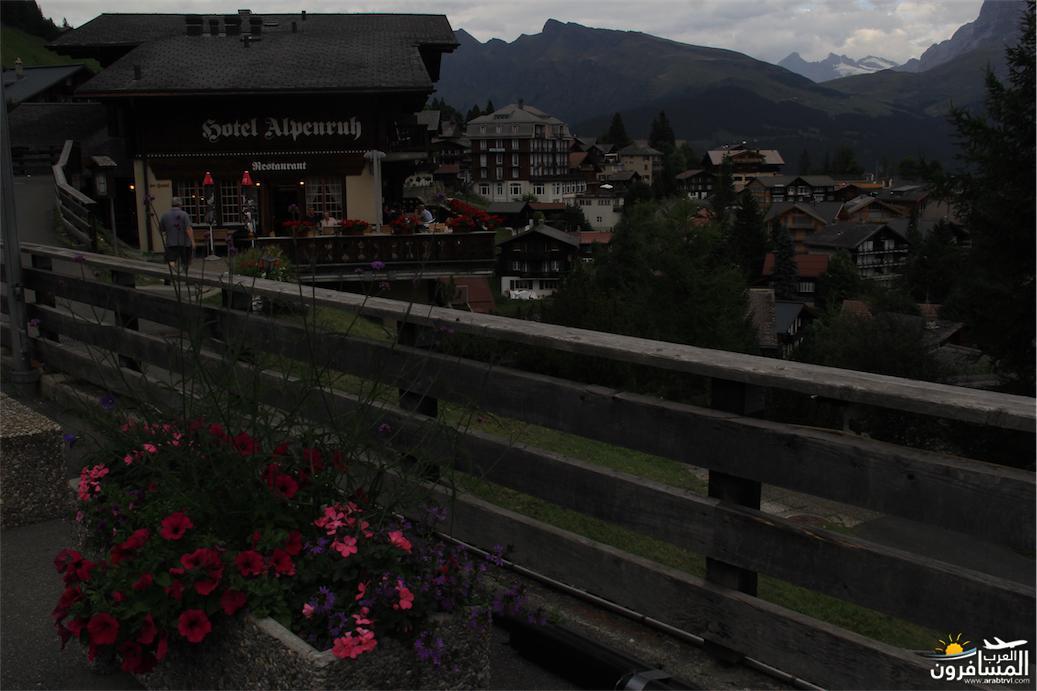 سويسرا بيوت ملوّنة و جداريات-544115