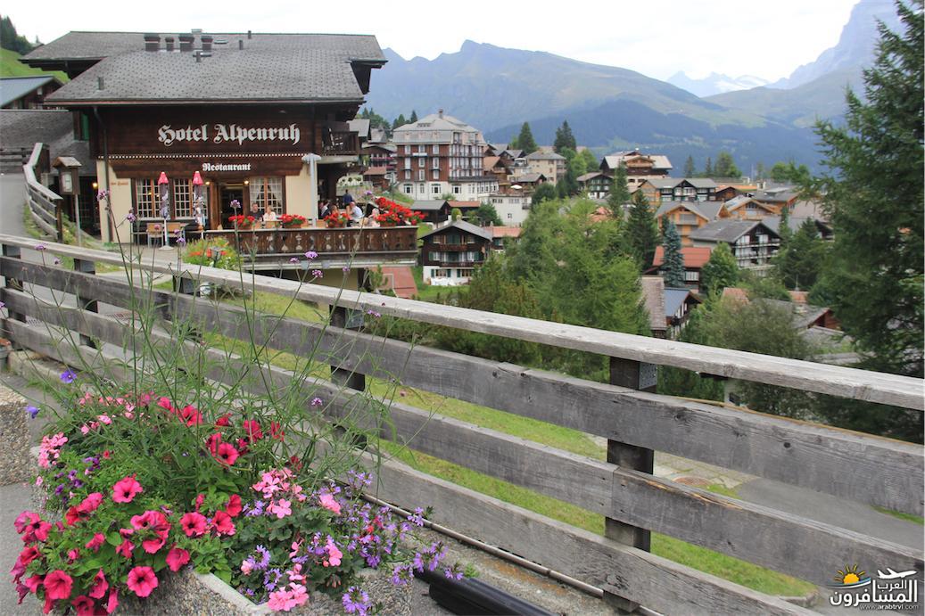 سويسرا بيوت ملوّنة و جداريات-544119