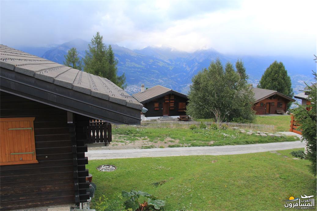 سويسرا بيوت ملوّنة و جداريات-544133