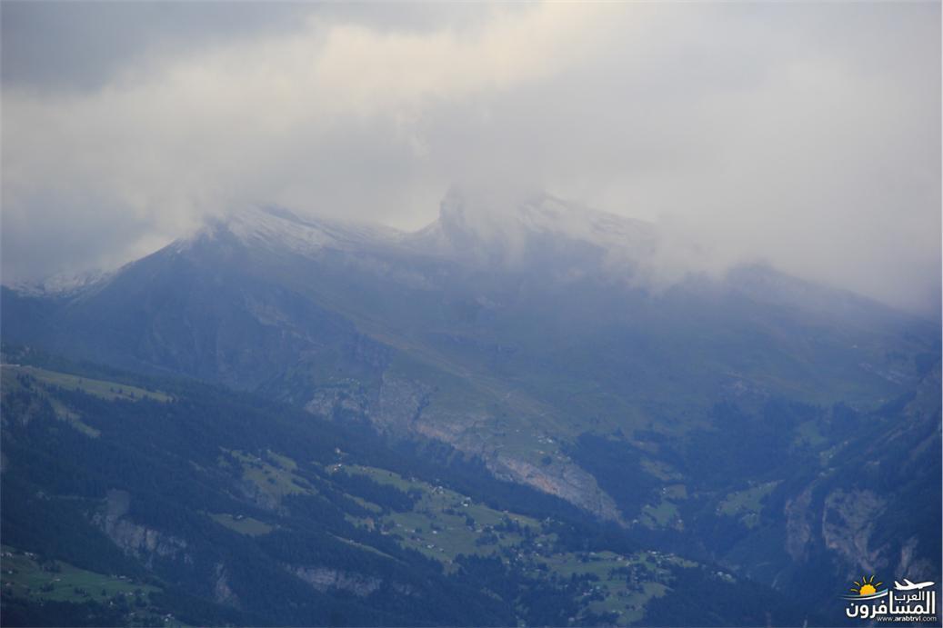 سويسرا بيوت ملوّنة و جداريات-544138