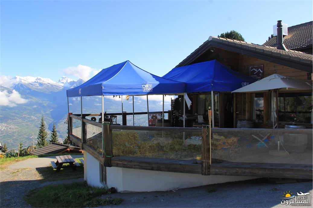 سويسرا بيوت ملوّنة و جداريات-544144