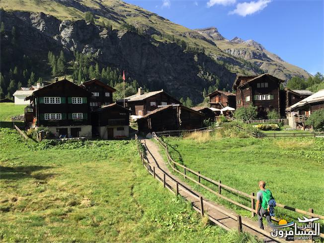 سويسرا بيوت ملوّنة و جداريات-544159