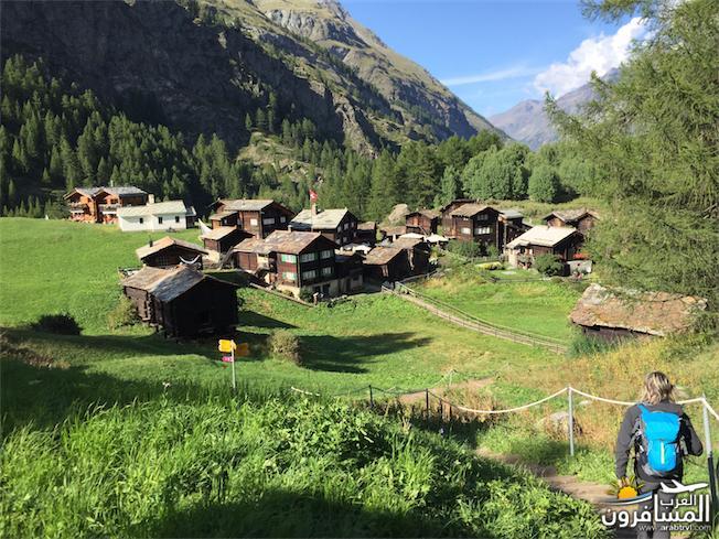 سويسرا بيوت ملوّنة و جداريات-544160