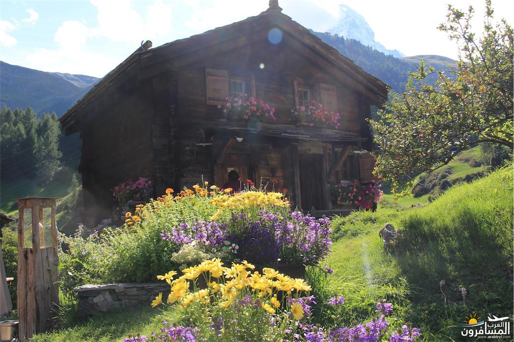 سويسرا بيوت ملوّنة و جداريات-544176