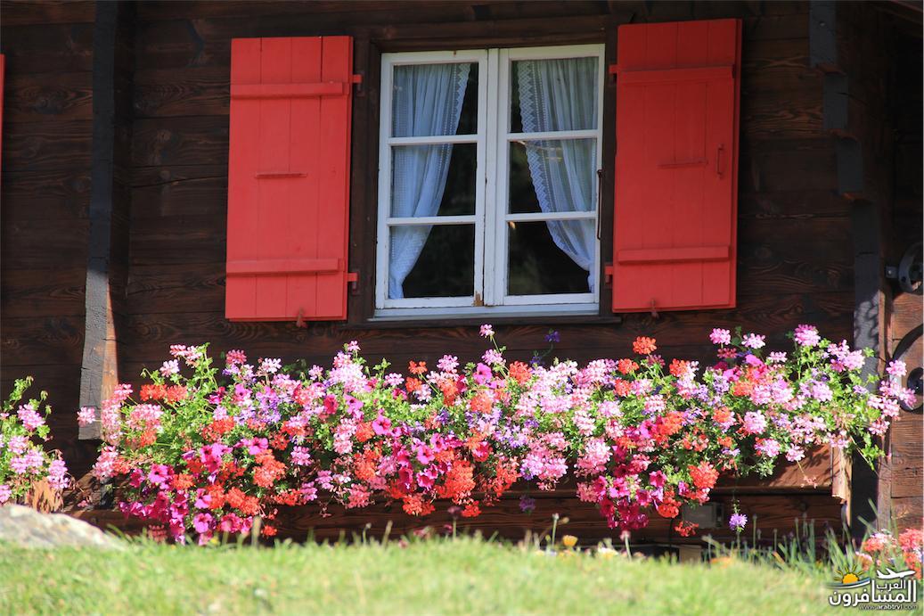 سويسرا بيوت ملوّنة و جداريات-544178