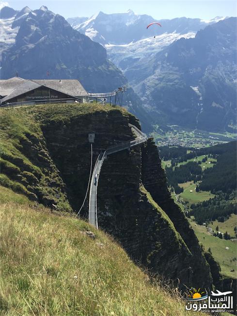 سويسرا بيوت ملوّنة و جداريات-544214