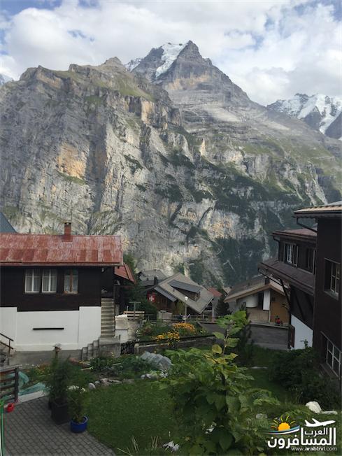 سويسرا بيوت ملوّنة و جداريات-544217