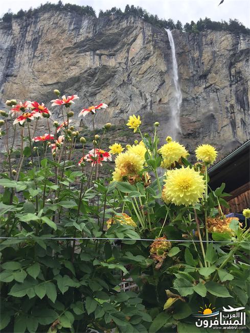 سويسرا بيوت ملوّنة و جداريات-544221