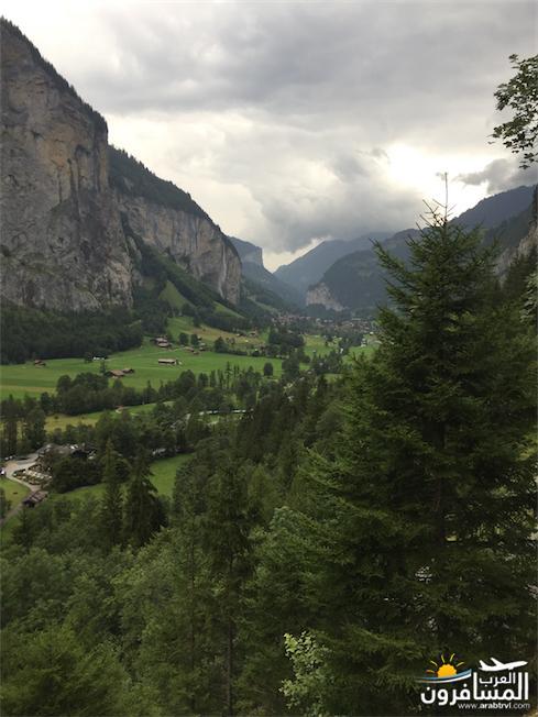 سويسرا بيوت ملوّنة و جداريات-544223
