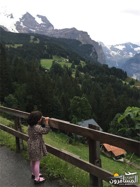 سويسرا بيوت ملوّنة و جداريات-544224