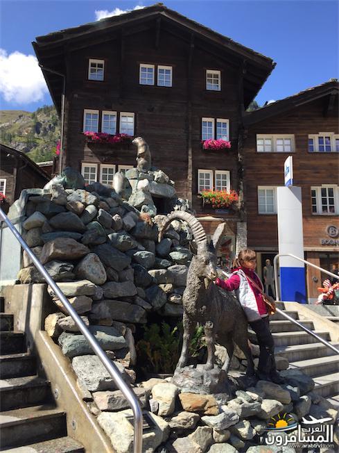 سويسرا بيوت ملوّنة و جداريات-544234