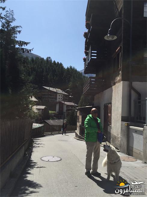 سويسرا بيوت ملوّنة و جداريات-544235