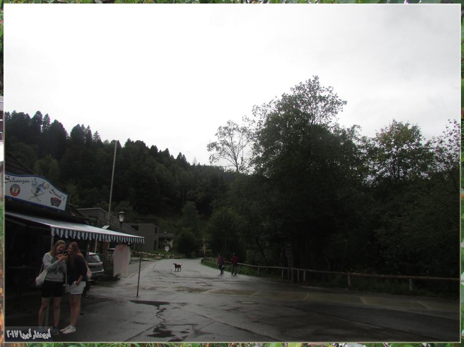 13-11.jpg