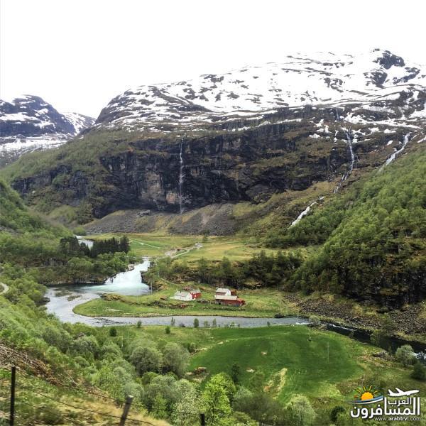 565161 المسافرون العرب النرويج بلد الطبيعه والجمال