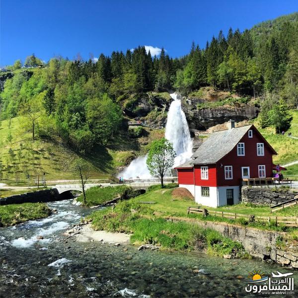 565162 المسافرون العرب النرويج بلد الطبيعه والجمال