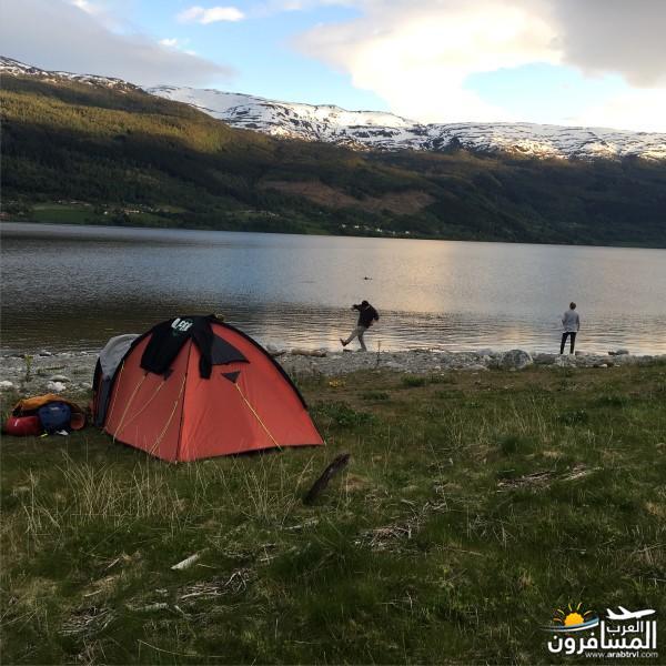 565167 المسافرون العرب النرويج بلد الطبيعه والجمال
