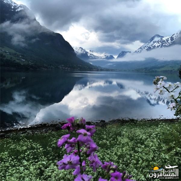 565169 المسافرون العرب النرويج بلد الطبيعه والجمال