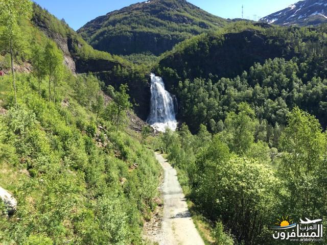565254 المسافرون العرب النرويج بلد الطبيعه والجمال