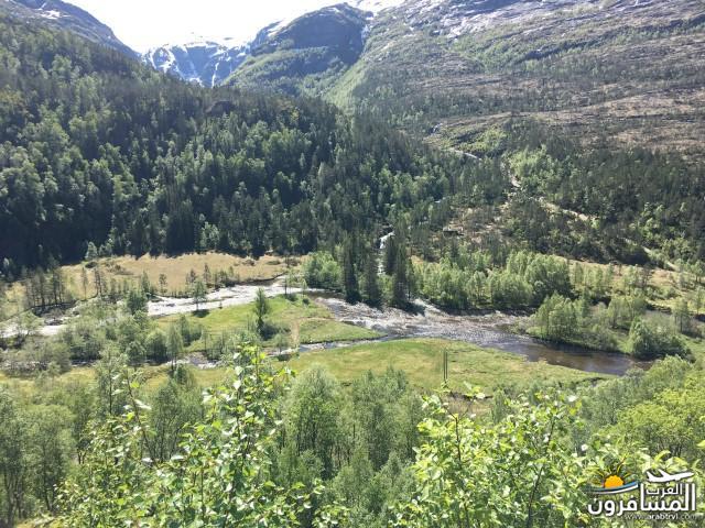 565255 المسافرون العرب النرويج بلد الطبيعه والجمال
