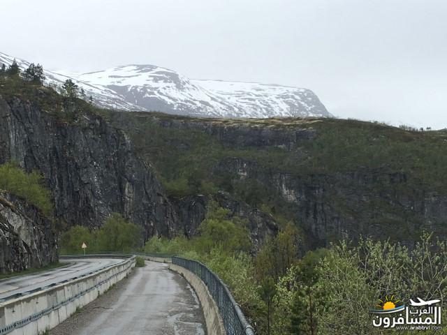 565344 المسافرون العرب النرويج بلد الطبيعه والجمال