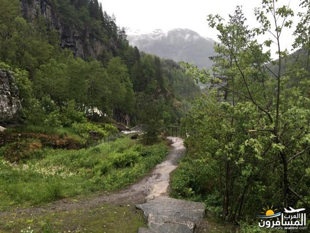 565382 المسافرون العرب النرويج بلد الطبيعه والجمال