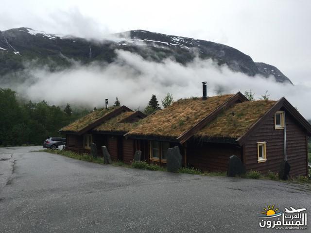 565394 المسافرون العرب النرويج بلد الطبيعه والجمال