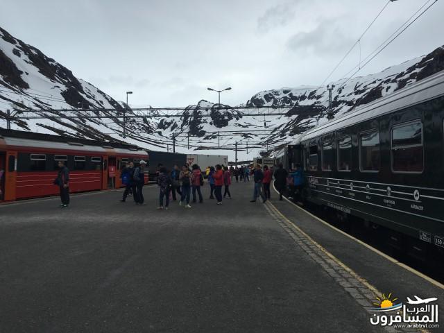 565432 المسافرون العرب النرويج بلد الطبيعه والجمال