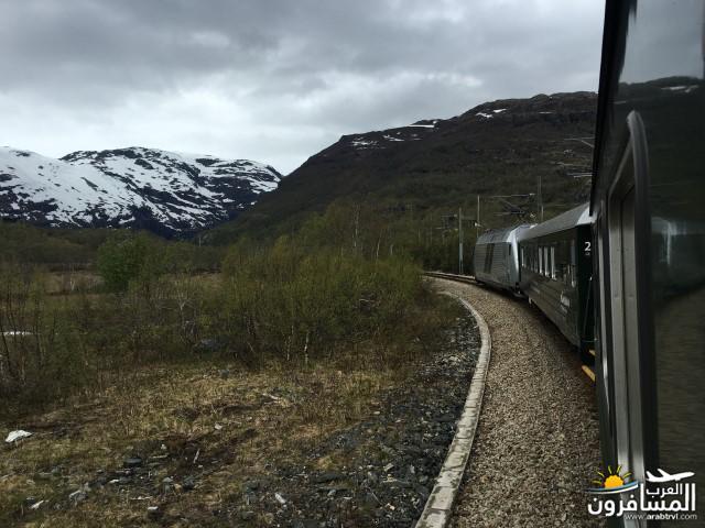 565436 المسافرون العرب النرويج بلد الطبيعه والجمال