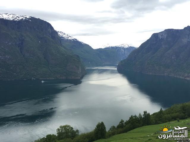 565452 المسافرون العرب النرويج بلد الطبيعه والجمال