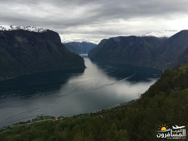 565457 المسافرون العرب النرويج بلد الطبيعه والجمال