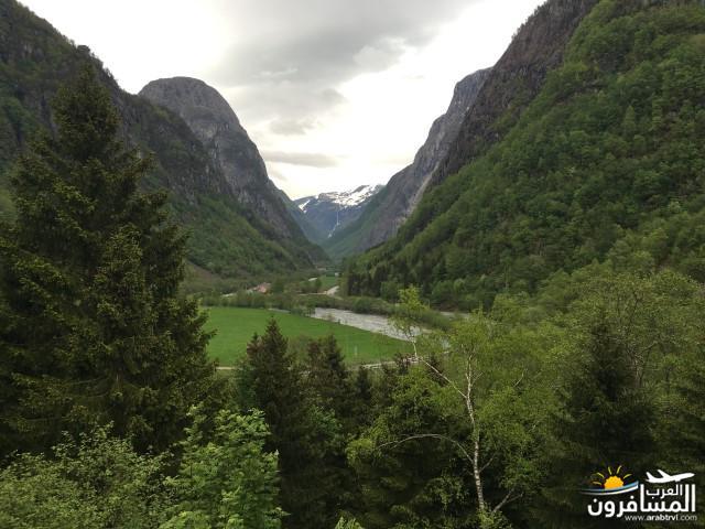565469 المسافرون العرب النرويج بلد الطبيعه والجمال