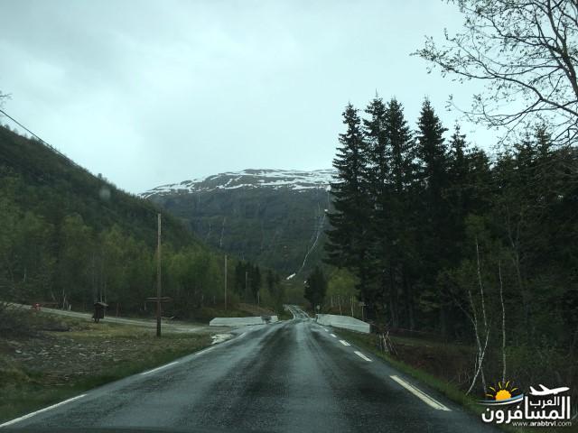565491 المسافرون العرب النرويج بلد الطبيعه والجمال