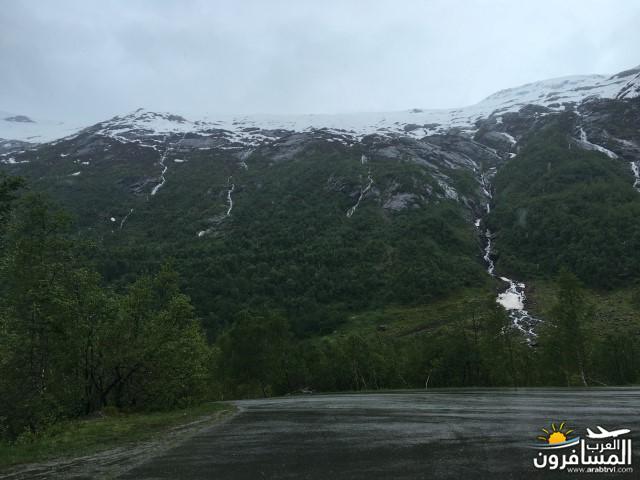 565537 المسافرون العرب النرويج بلد الطبيعه والجمال