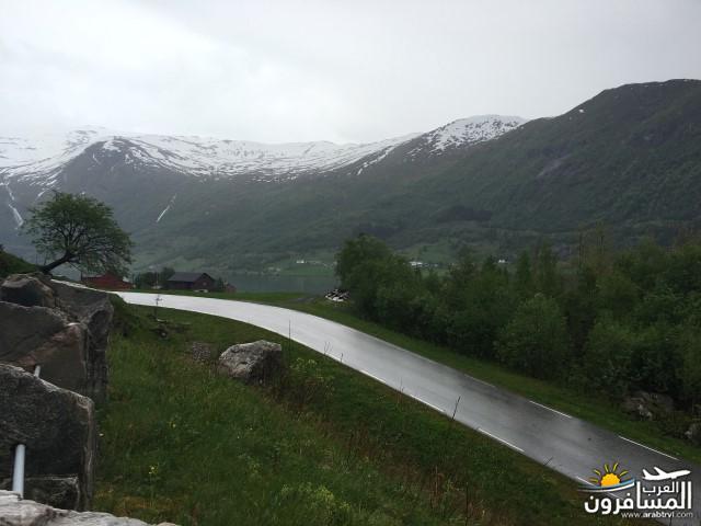 565539 المسافرون العرب النرويج بلد الطبيعه والجمال