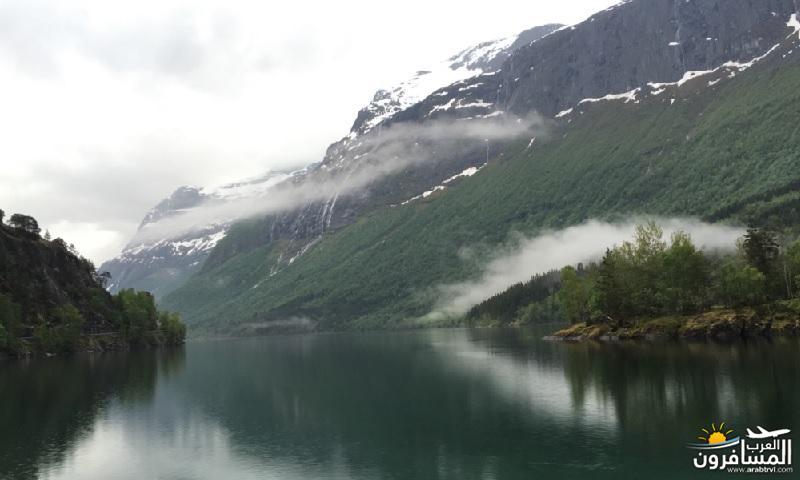 565546 المسافرون العرب النرويج بلد الطبيعه والجمال