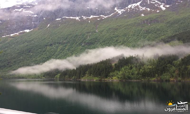 565547 المسافرون العرب النرويج بلد الطبيعه والجمال