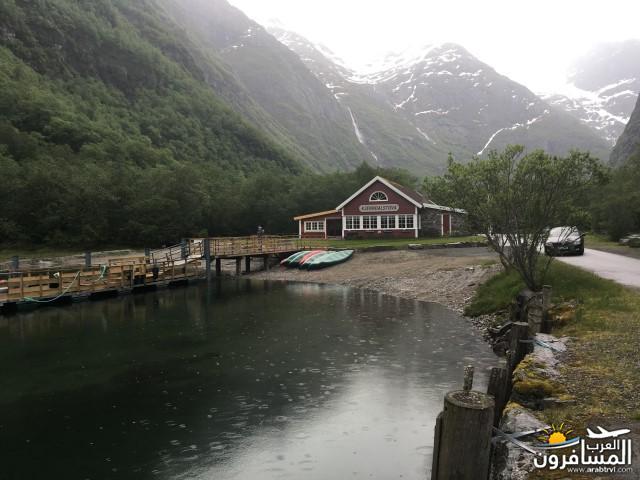 565553 المسافرون العرب النرويج بلد الطبيعه والجمال