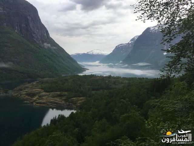 565561 المسافرون العرب النرويج بلد الطبيعه والجمال