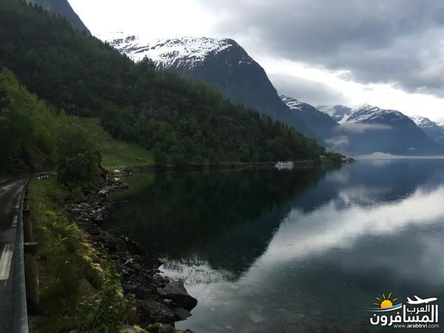 565568 المسافرون العرب النرويج بلد الطبيعه والجمال