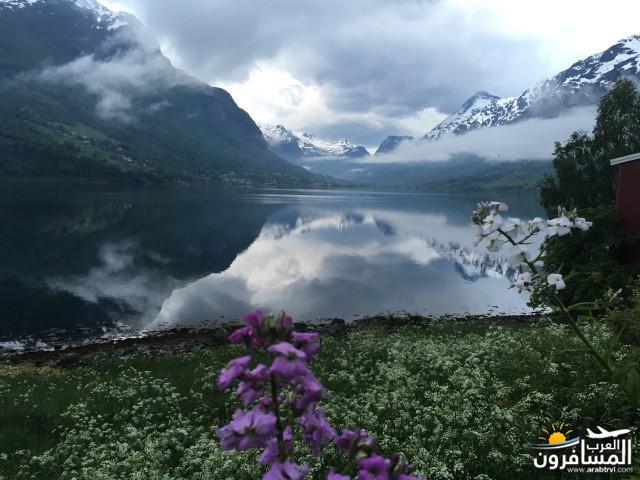 565572 المسافرون العرب النرويج بلد الطبيعه والجمال