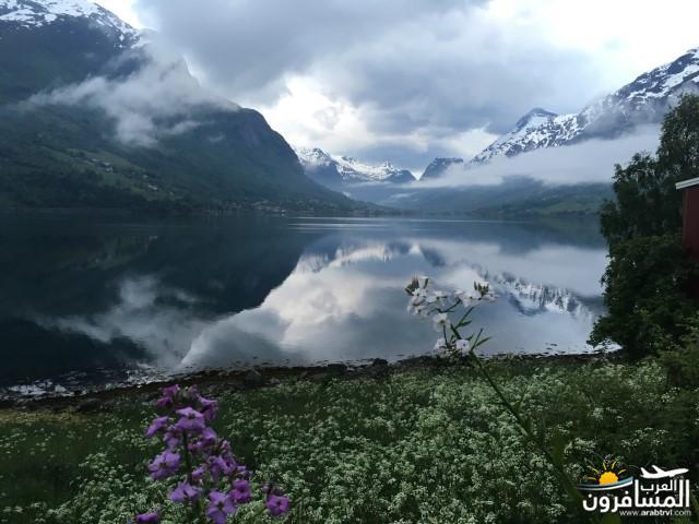 565573 المسافرون العرب النرويج بلد الطبيعه والجمال
