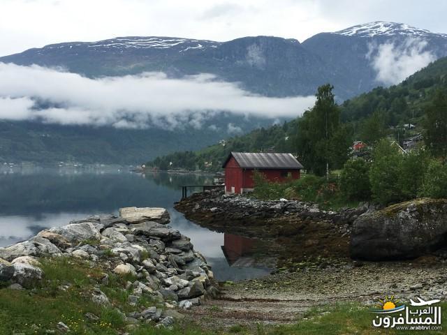 565592 المسافرون العرب النرويج بلد الطبيعه والجمال