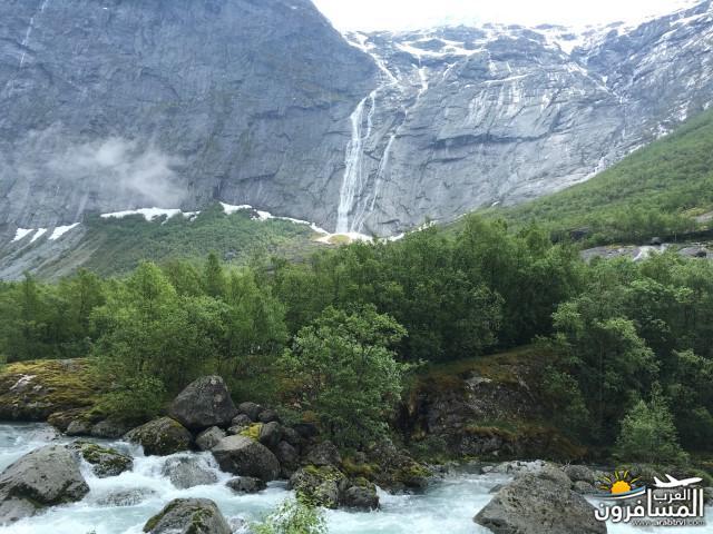 565607 المسافرون العرب النرويج بلد الطبيعه والجمال