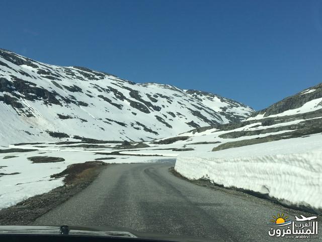 565646 المسافرون العرب النرويج بلد الطبيعه والجمال