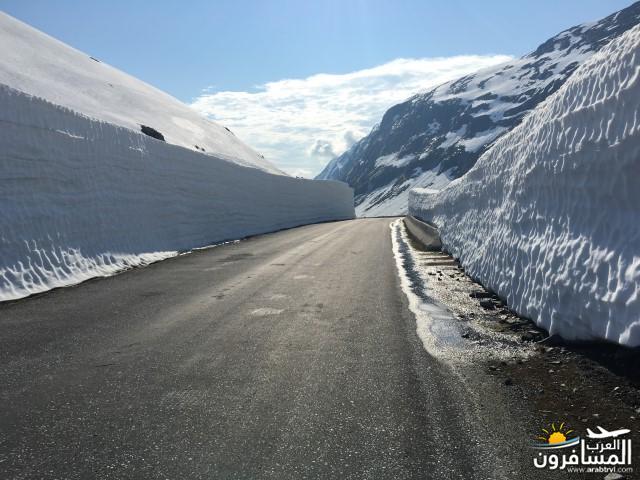 565652 المسافرون العرب النرويج بلد الطبيعه والجمال